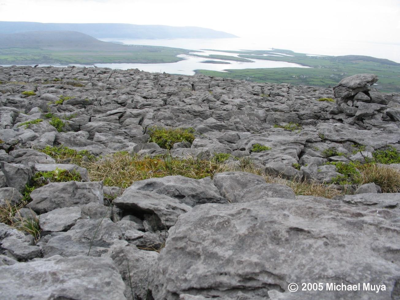 The Burren copy
